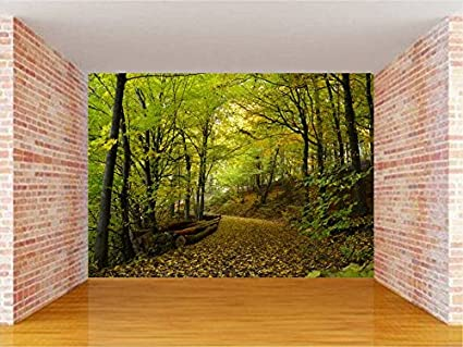 Buy Envouge Customized 3d Wallpaper Nature Washable 6ft X 5ft For