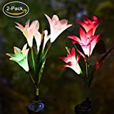 Solar Garden Stake Lights Outdoor -Detective Solar Powered Garden Stake Lights with 8 Lily Flower,Auto Changing Color LED Solar Light for Garden Lawn Grass-plot (2 Pack,Purple & White) Review