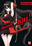 Akame ga KILL! 01