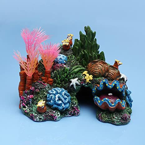 Acuario Resina Coral Conch shells plantas acuáticas Roca Decoración: Amazon.es: Productos para mascotas