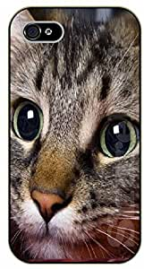 iPhone 4S Cat face - black plastic case / dog, animals, dogs