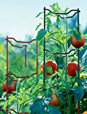 Stacking Tomato Ladders, Set of 6, Heavy Gauge
