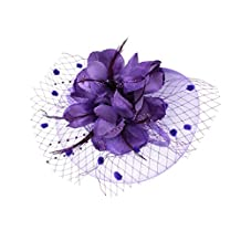MonkeyJack Lady Flower Fascinator Hat Hair Band Cocktail Wedding Party Headpiece - Purple