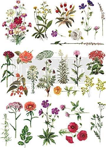 Prima Marketing Inc Redesign Peinture de transfert Motif fleurs 55,9 x 81,3 cm