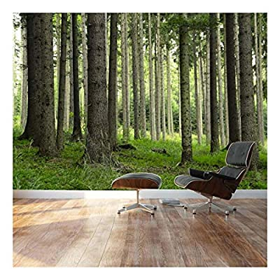Tree Trunks in a Beautiful Green Forest - Landscape - Wall Mural, Removable Sticker, Home Decor - 66x96 inches