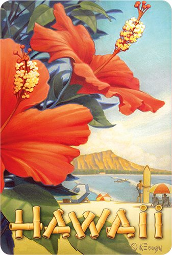 (Hawaiian Vintage Postcards Pack of 30 - Hibiscus Beach Day by Kerne Erickson)