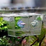 Afco Aquarium Fish Tank Guppy Double Breeding Breeder Rearing Trap Box Hatchery for Sick and Pregnancy Fish Size 12cm x 7cm x 7cm (Transparent)