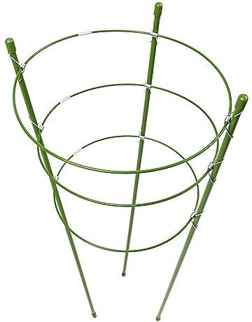 lulalula Anillos de apoyo para plantas (2 unidades, acero inoxidable, soporte para jaula