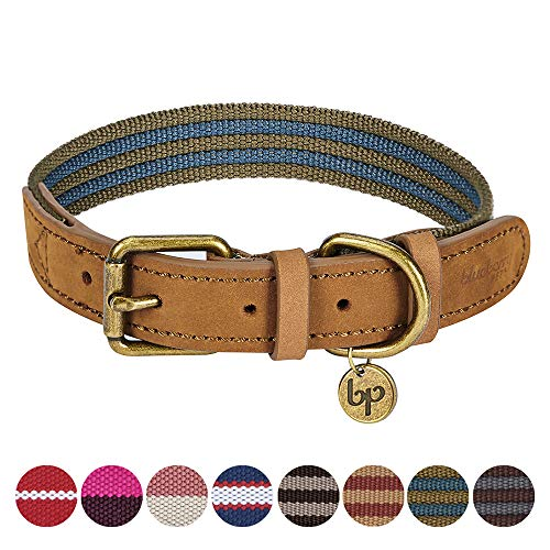 Blueberry Pet 8 Colors Polyester Fabric Webbing and Soft Genuine Leather Dog Collar in Navy and Olive, Medium, Neck 15-18, Adjustable Collars for Dogs