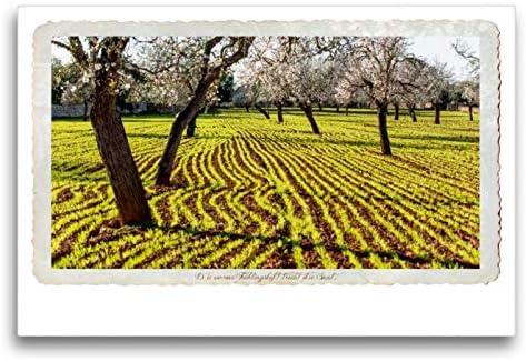 Calvendo Lienzo Premium 75 cm x 50 cm Horizontal, un Motivo del Calendario Emocional Momente – ganas de Vivir en Mallorca. Imagen sobre Lienzo, impresión en Lienzo, Color Natural