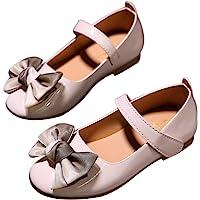 DEBAIJIA Princess Niñas Zapatos 2-9 Años Zapatillas Moda Niños Clásico Hermosa Flor Tendencia Primavera Otoño Fondo…