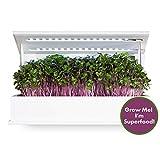 Grow Book Cruciferous Edition, Countertop Herb Garden, Complete Indoor Garden Including Organic Non GMO Seeds, Potting Soil & LED Grow Lights. Microgreens Vegetable Garden.
