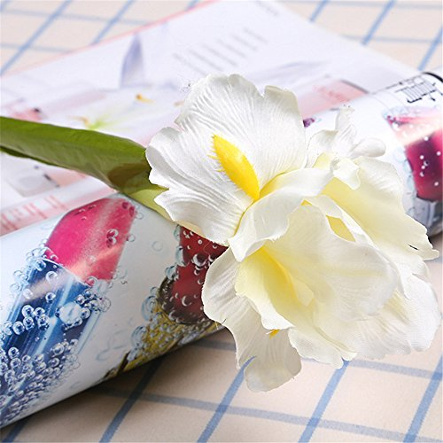 Buy white iris flower