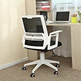 Hbada Adjustable Home Desk Chair, Super Comfort Ergonomic Mesh Back with Lumbar Support Low Back (White)