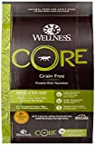 Image of Wellness CORE Natural Grain Free Dry Dog Food, Reduced Fat, 12-Pound Bag