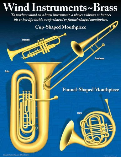 Music Treasures Co. Symphony Orchestra Instrument Poster Set