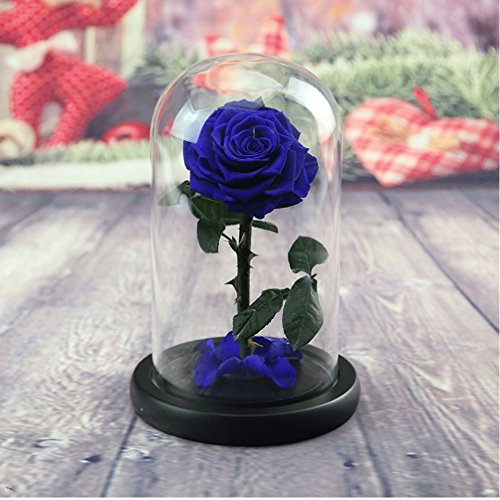 Eternal Flowers Dried Flowers Gift Box - Preserved Fresh Flower Live Dry Rose Enchanted Rose in Glass Dome Cover with Gift Box for Valentine's Day Mothers Day Anniversary Birthday Wedding