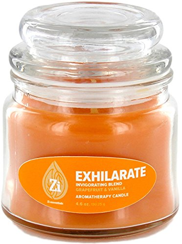 - Exhilarate Invigorating Blend (Grapefruit & Vanilla) Aromatherapy Candle. 4.5oz Apothecary Jar - Zi Essentials …