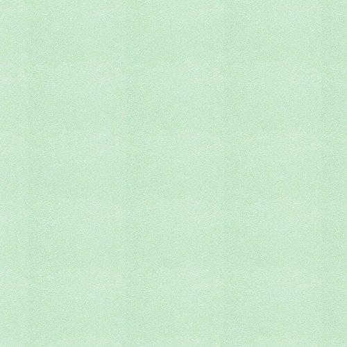 Carousel Designs Solid Mint Minky Cradle Sheet