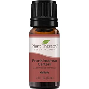 Plant Therapy Frankincense Carterii Essential Oil 100% Pure, Undiluted, Natural Aromatherapy, Therapeutic Grade 10 mL (1/3 oz)