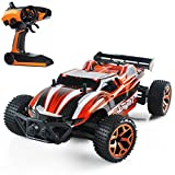 Remote Control Car High Speed RC Cars Dune Buggy 1:18 Scale 2.4Ghz Electric Remote Control Off road Racing Car