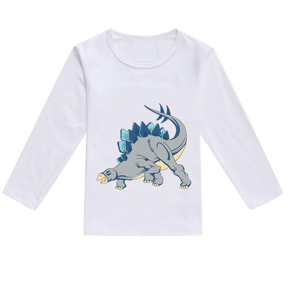 NUWFOR Toddler Baby Kids Boys Girls Spring Dinosaur Print Tops T-Shirt Casual Clothes(Gray,2-3 Years)