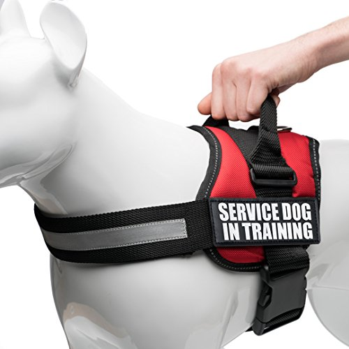 - Service Dog Vest Harness with 2 Reflective Service Dog In Training Vest Patches, for Working Dogs sizes Small, Medium, Large, Swap Patches With Your Support Patch Preference, by Industrial Puppy