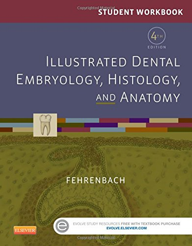 Student Workbook for Illustrated Dental Embryology, Histology and Anatomy, 4e