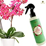 buy Orchid Spray Fertilizer - Plant Food Mist - Enhances Growth, Provides Food, Nutrients and Moisture - No Mixing or Diluting Needed, Ready to Use Formula - for Indoor Potted Plants & Terrariums now, new 2020-2019 bestseller, review and Photo, best price $7.95