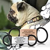 The Pet ID Jingle Free Peace of Mind Dog Tag