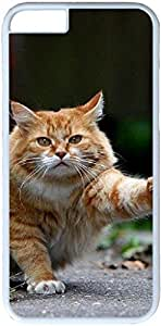 Animals Cats #27344 Apple iPhone 6 Case, iPhone 6 Cases PC White Hard Shell Cover Skin Cases