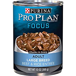 Purina Pro Plan Large Breed Gravy Wet Dog Food, FOCUS Beef & Rice Entree - (12) 13 oz. Cans
