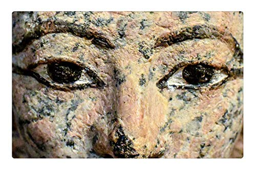 Tree26 Indoor Floor Rug/Mat (23.6 x 15.7 Inch) - Sculpture Statue Art Face Ancient Egyptian Museum 2