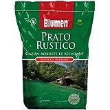 Sementi Prato Rustico 5 kg + 1 kg omaggio - Resistente e Robusto
