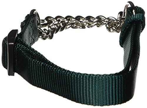 (Hamilton Adjustable Combo Choke Dog Collar)