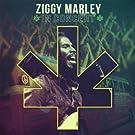 Ziggy Marley in Concert