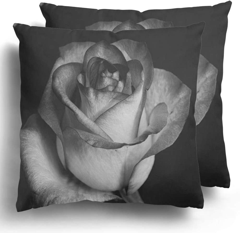 Starocha Throw Pillow Covers Pack of 2 Black and White Rose Flowers is Woody Perennial Flowering Plant of The Genus Polyester Cushion Case Couch Decor 20 x 20 Inches