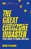 Disaster in Euroland, Patomaki, 1780324790