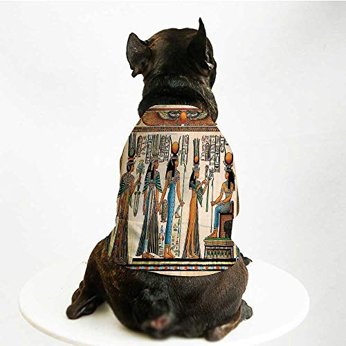 YOLIYANA Egyptian Comfortable Pet Suit,Egyptian Papyrus Depicting Queen Nefertari Making an Offering to Isis Image Print for Teddy Chihuahua Bichon,M]()