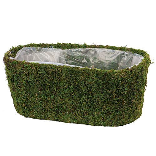 Skalny Oval Moss Planter with Sewn in Liner, 14.25