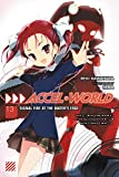 Accel World, Vol. 13 (light novel): Signal Fire at the Water's Edge
