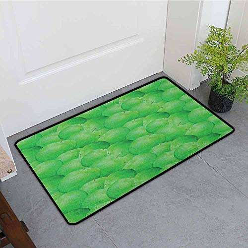 - ONECUTE Funny Doormat,Apple Juicy Green Apples with Stalks Orchard Yield Tasty Nutritious Vegetarian Options,Bathroom mat,31