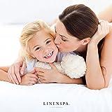 LINENSPA Premium Smooth Fabric Mattress