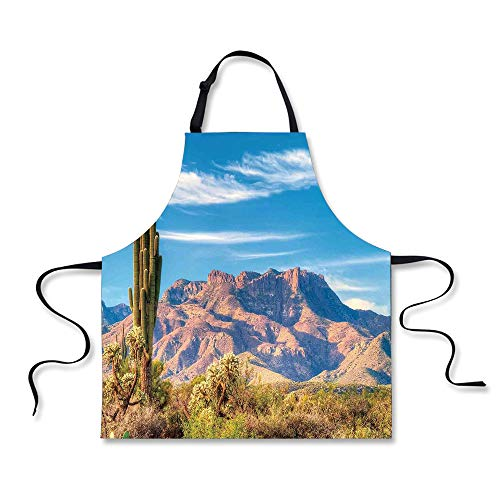 iPrint Cooking Apron,Cactus Decor,Landscape of Mountain Sun