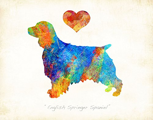 Water Spaniel Dog Art (ENGLISH SPRINGER SPANIEL Dog Watercolor Art Print by Dan Morris)