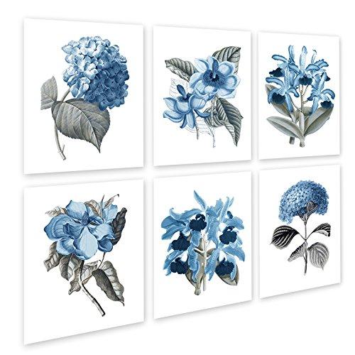 Blue Flowers Botanical Prints Set of 6 Reproduction Unframed Girls Room Wall Art Prints ()