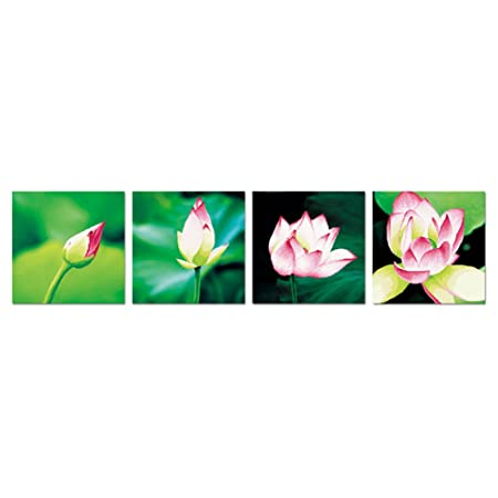 Lotus Flowers Growing 3d Stamped Cross Stitch Kit 752inch By 189