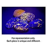 Yooperlite Authentic Glow Stone from Michigan's