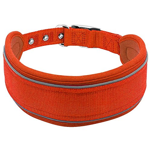 Wide Nylon Collar - Didog Nylon Reflective Padded Extra Wide Dog Collar for Large Dogs,2.5