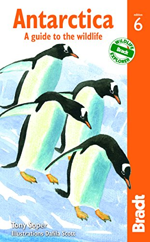 Antarctica, 6th: A Guide to the Wildlife (Bradt Travel Guide)
